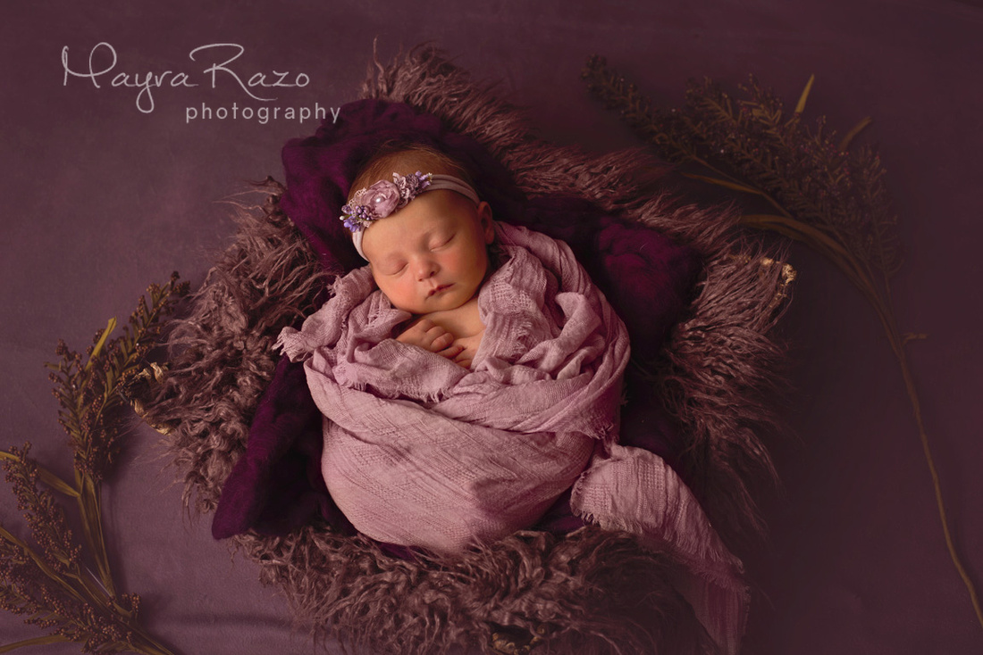 newborn girl in basket with plum colors